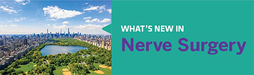 What's New in Nerve Surgery? - Join us in NYC in April 2020 to find out!